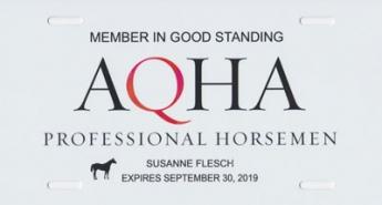 AQHA Professional Horsemen